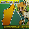 Madagascar's conservation heroes