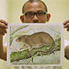 Discovering new Philippine mammals